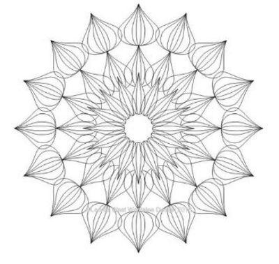 "Artisan Curve Iris 20 Template .5""x3""- High Shank"